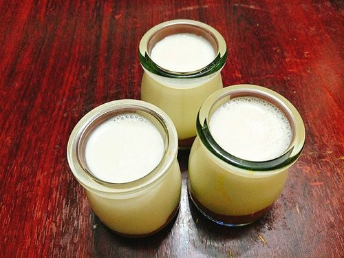 sữa chua sầu riêng